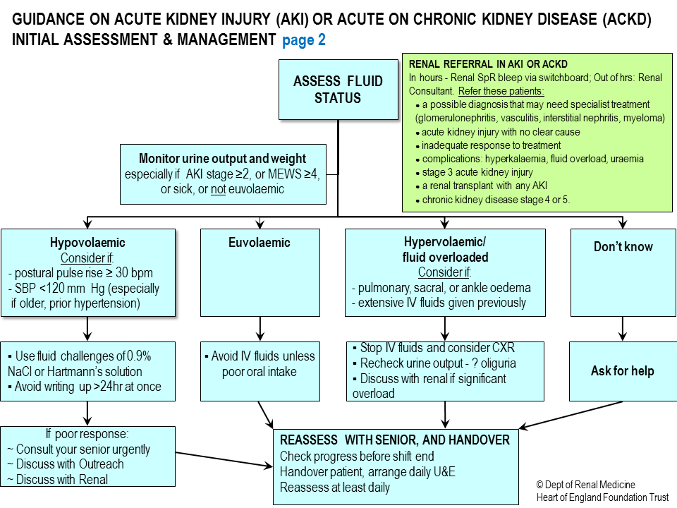 chronic and acute kidney disease Acute and chronic kidney disease hs-1006 clinical practice guideline page 1.